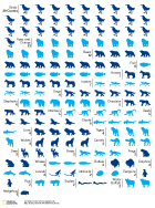 National Geographic Animal Covers